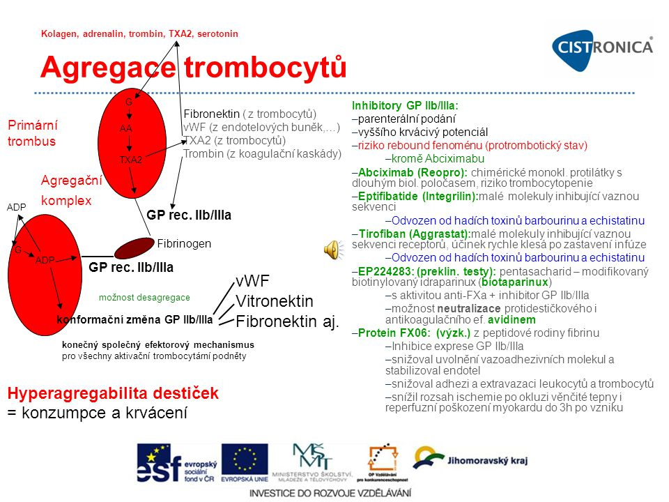 Agregace trombocytů vWF Vitronektin Fibronektin aj.