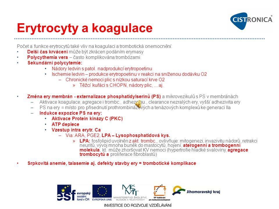 Erytrocyty a koagulace