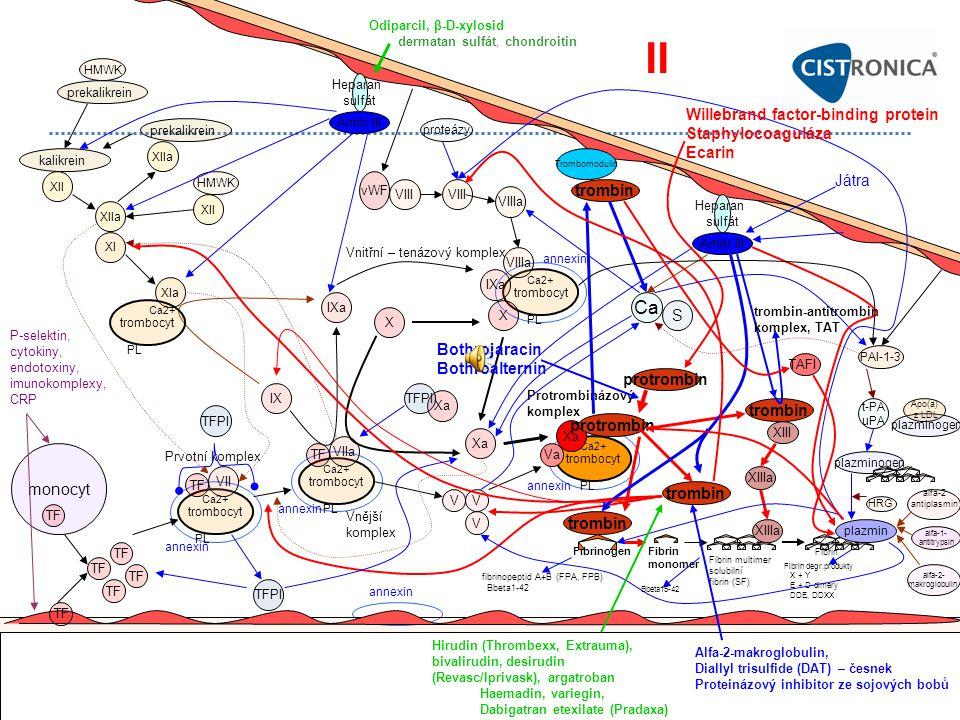 II Ca Willebrand factor-binding protein Staphylocoaguláza Ecarin Játra
