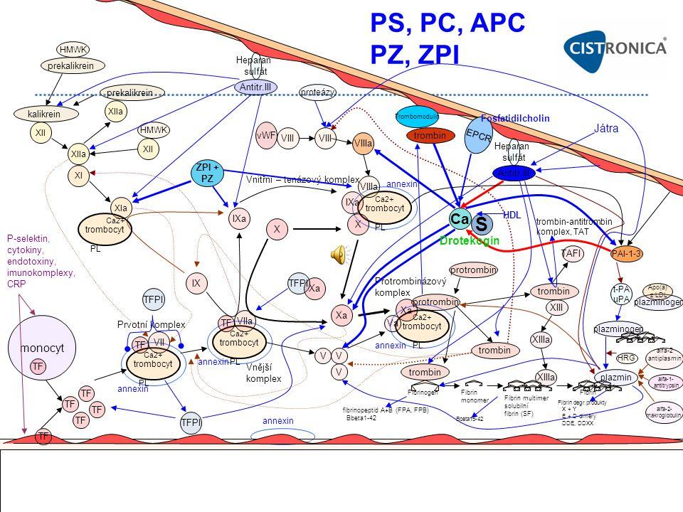 PS, PC, APC PZ, ZPI S Ca Játra Drotekogin monocyt Heparan sulfát