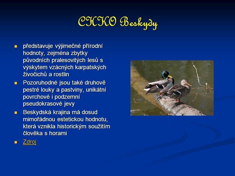 CHKO Beskydy představuje výjimečné přírodní hodnoty, zejména zbytky původních pralesovitých lesů s výskytem vzácných karpatských živočichů a rostlin.
