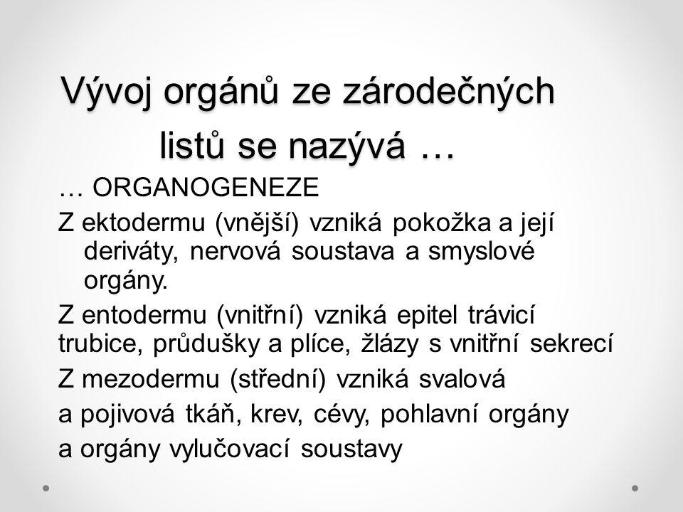 Vývoj orgánů ze zárodečných listů se nazývá …