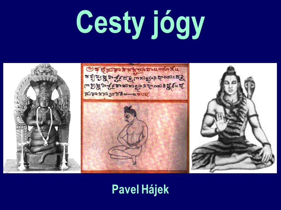 Cesty jógy Pavel Hájek