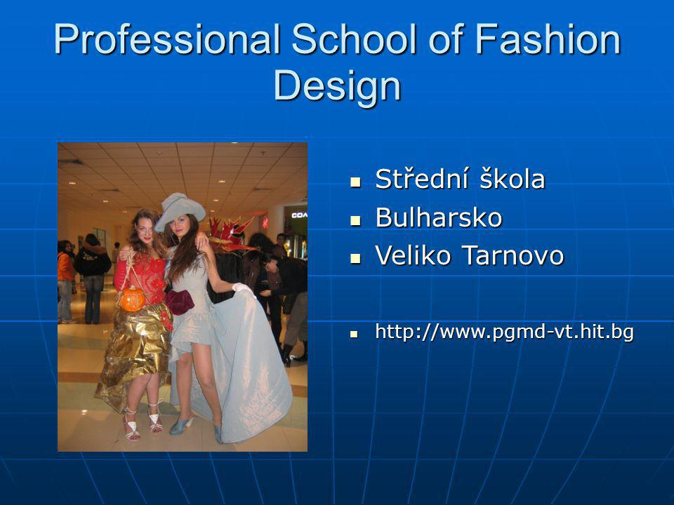 Professional School of Fashion Design