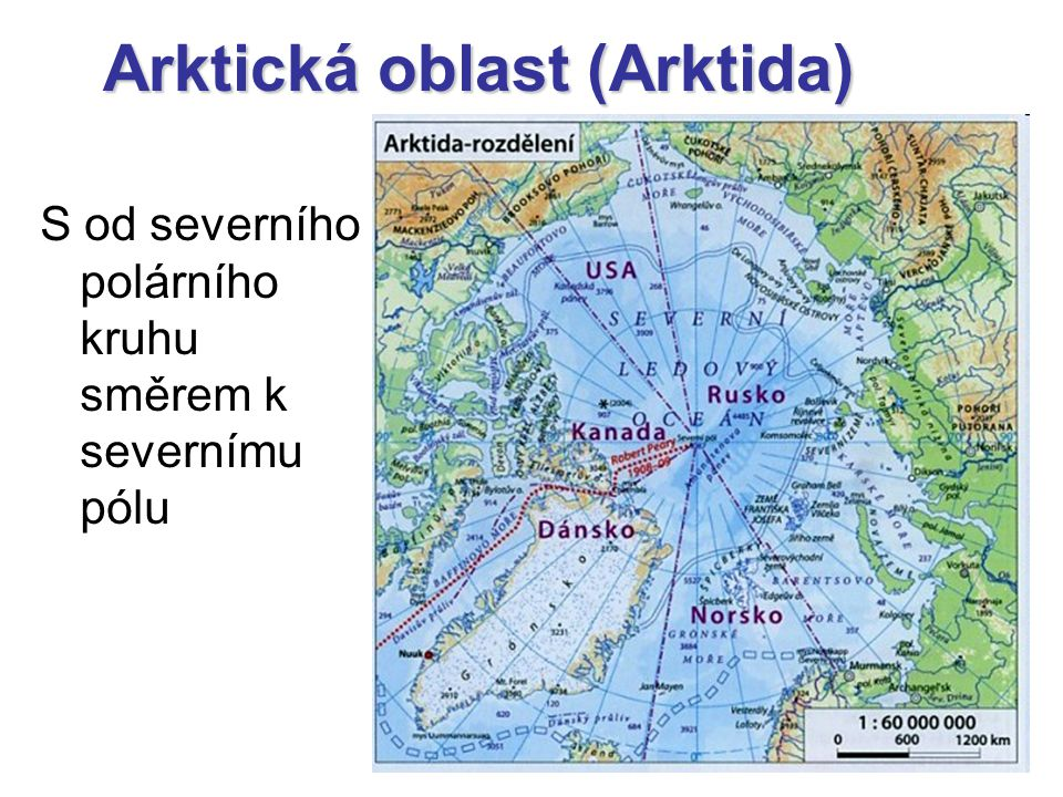 Arktická oblast (Arktida)