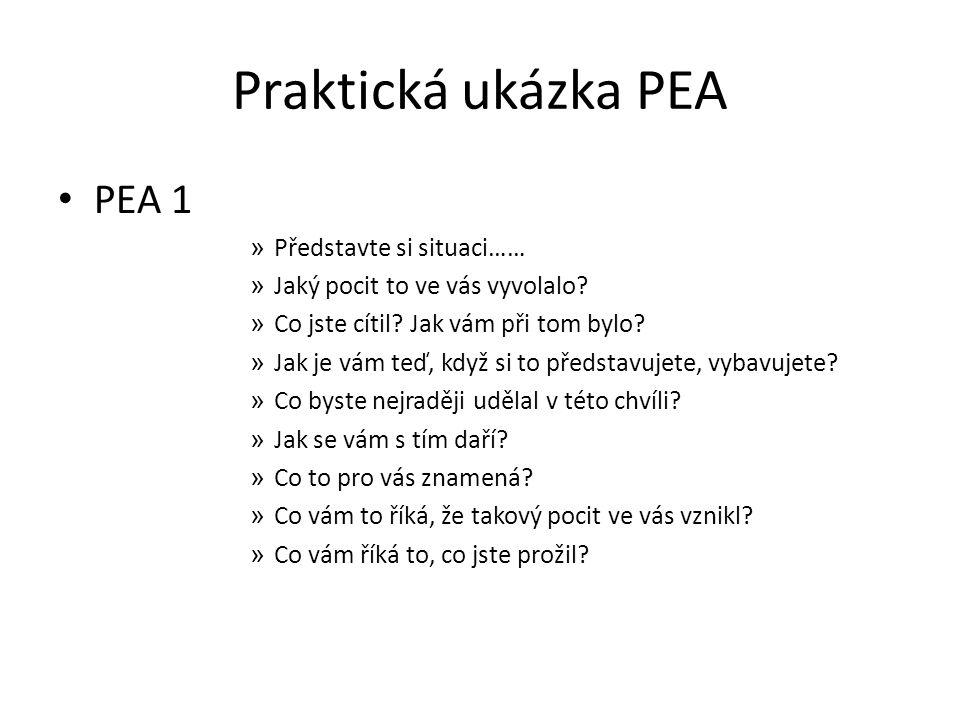 Praktická ukázka PEA PEA 1 Představte si situaci……