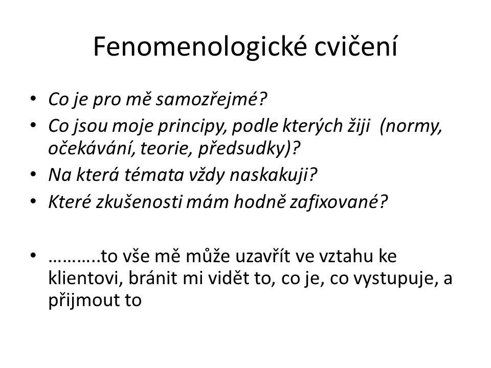 Fenomenologické cvičení