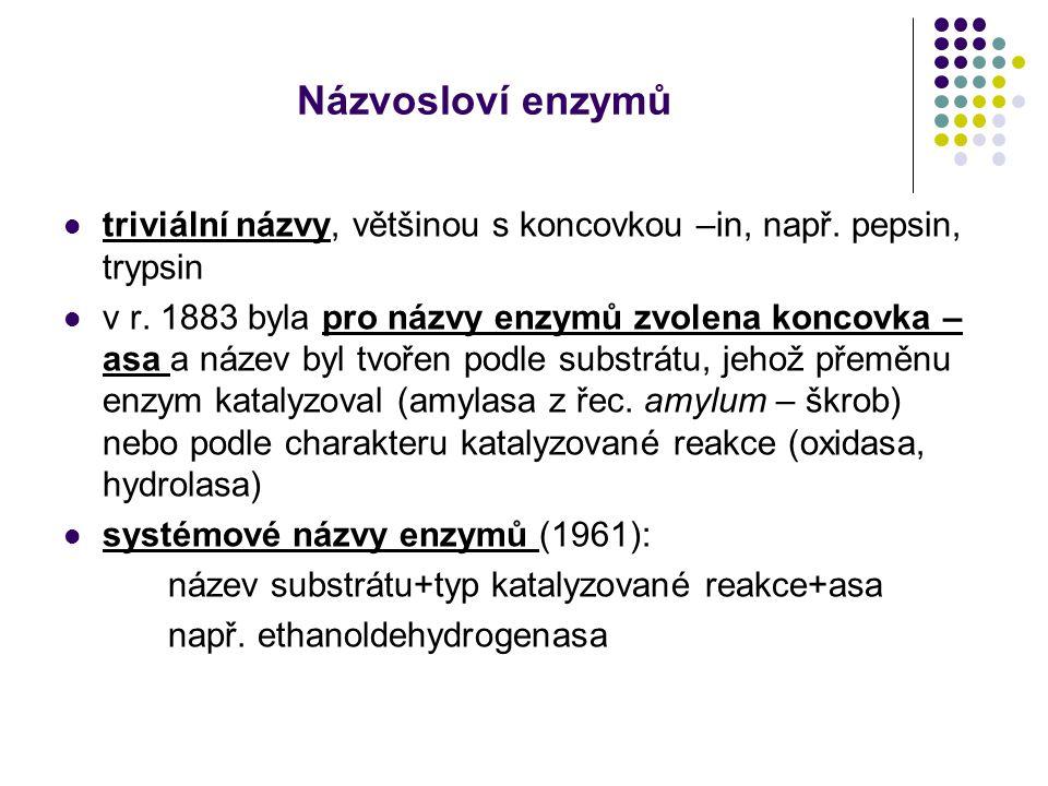 Názvosloví enzymů triviální názvy, většinou s koncovkou –in, např. pepsin, trypsin.