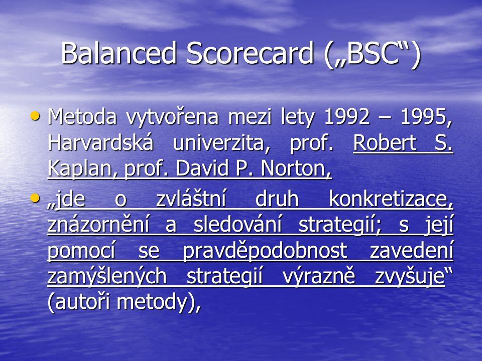 "Balanced Scorecard (""BSC )"