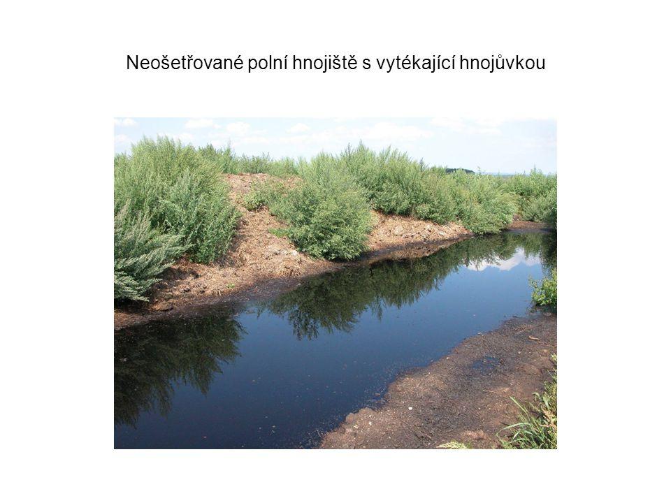 Neošetřované polní hnojiště s vytékající hnojůvkou
