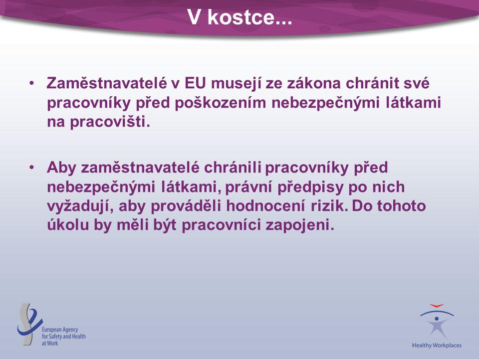 V kostce... Zaměstnavatelé v EU musejí ze zákona chránit své pracovníky před poškozením nebezpečnými látkami na pracovišti.