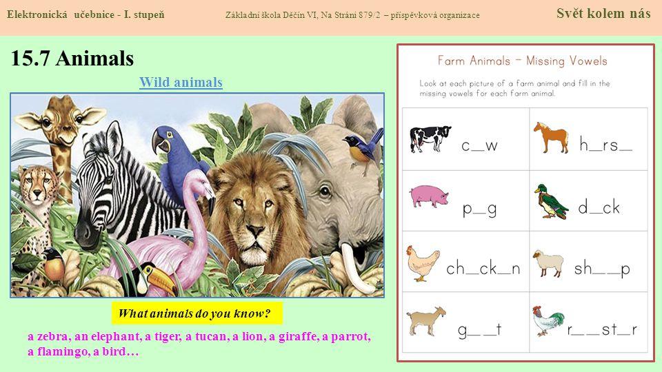 15.7 Animals Wild animals What animals do you know