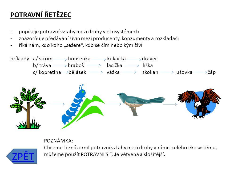 POTRAVNÍ ŘETĚZEC popisuje potravní vztahy mezi druhy v ekosystémech. znázorňuje předávání živin mezi producenty, konzumenty a rozkladači.