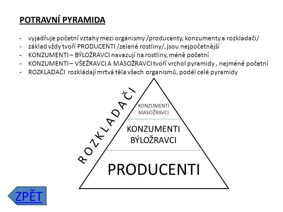 PRODUCENTI ZPĚT R O Z K L A D A Č I POTRAVNÍ PYRAMIDA
