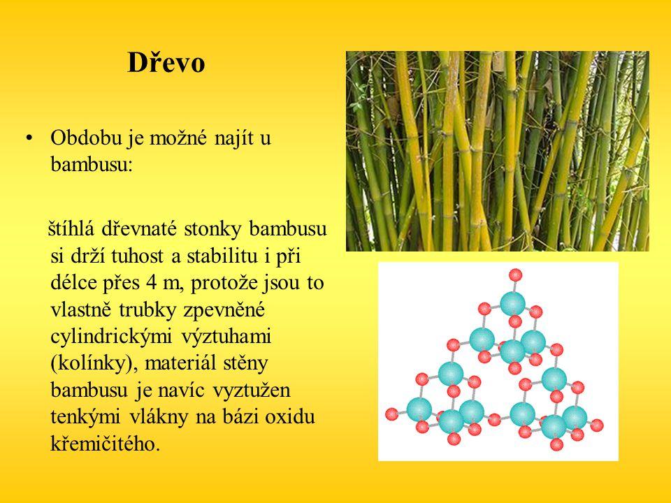 Dřevo Obdobu je možné najít u bambusu: