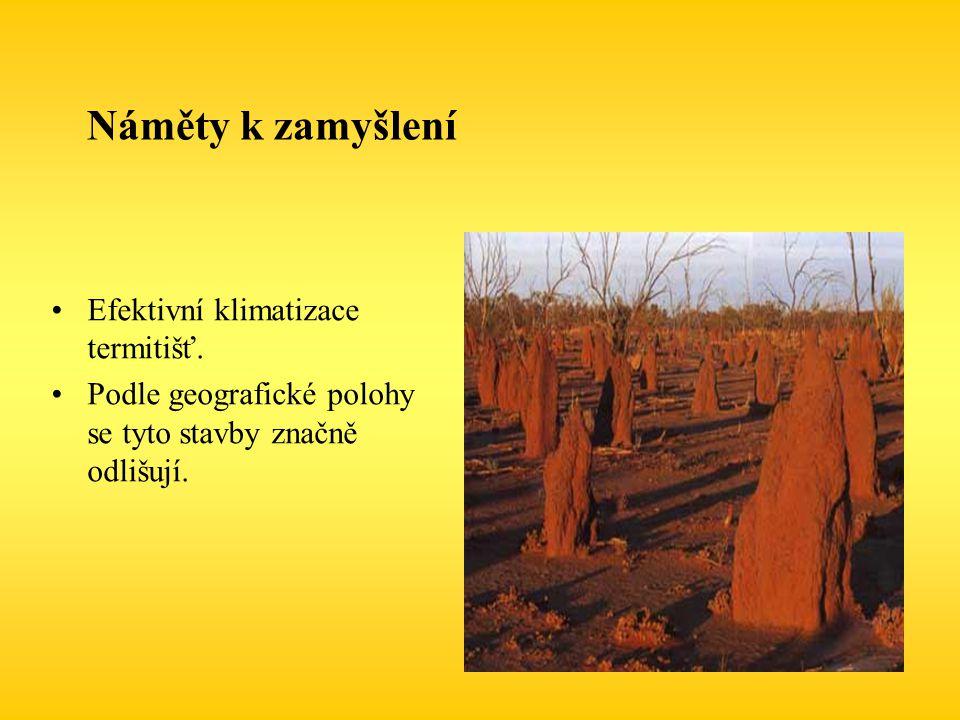 Náměty k zamyšlení Efektivní klimatizace termitišť.