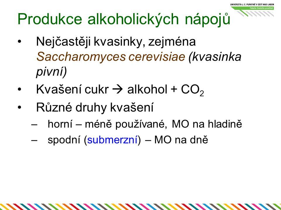 Produkce alkoholických nápojů