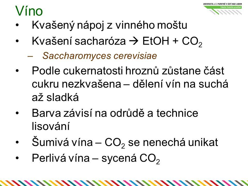 Víno Kvašený nápoj z vinného moštu Kvašení sacharóza  EtOH + CO2