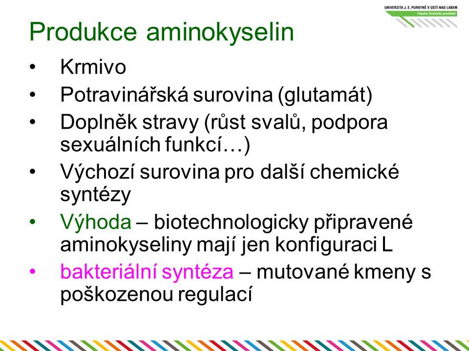 Produkce aminokyselin