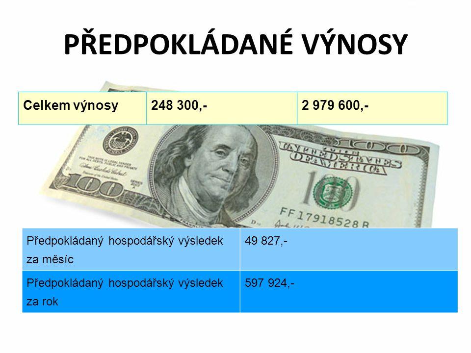 PŘEDPOKLÁDANÉ VÝNOSY Celkem výnosy 248 300,- 2 979 600,-
