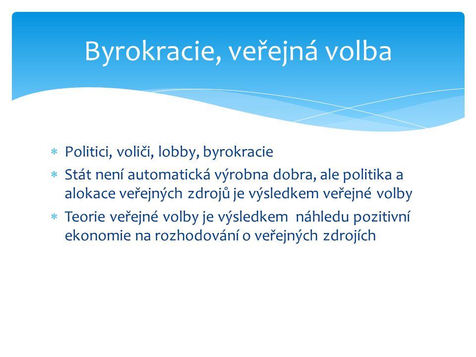 Byrokracie, veřejná volba