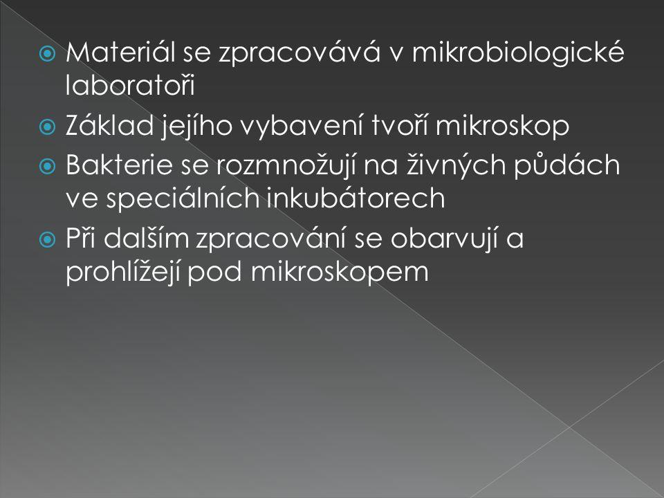 Materiál se zpracovává v mikrobiologické laboratoři