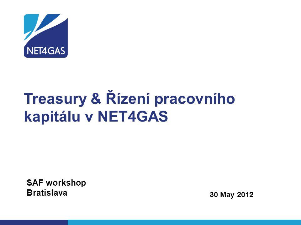 Treasury & Řízení pracovního kapitálu v NET4GAS