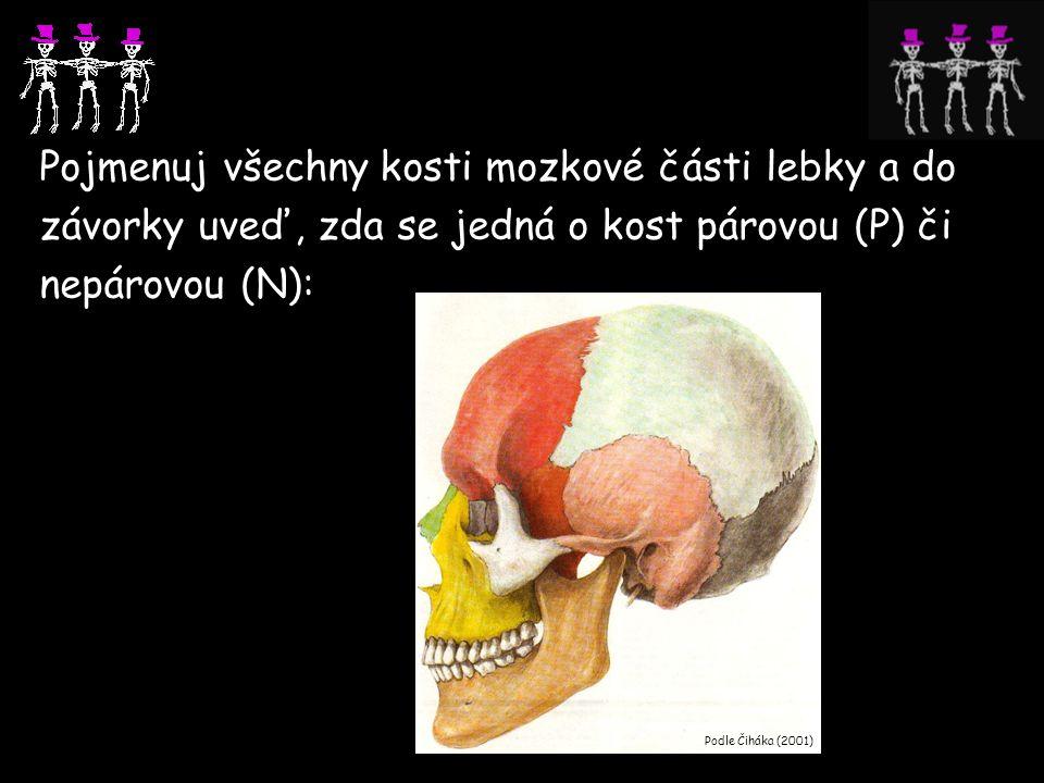 Pojmenuj všechny kosti mozkové části lebky a do závorky uveď, zda se jedná o kost párovou (P) či nepárovou (N):