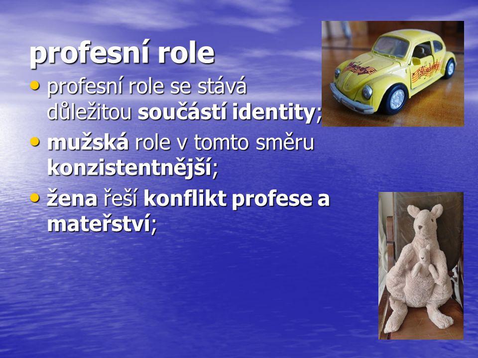 profesní role profesní role se stává důležitou součástí identity;