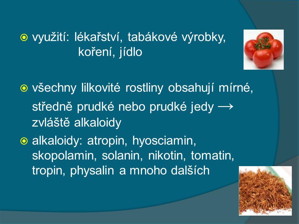 využití: lékařství, tabákové výrobky, koření, jídlo