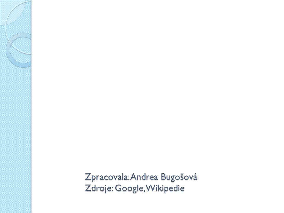 Zpracovala: Andrea Bugošová Zdroje: Google,Wikipedie