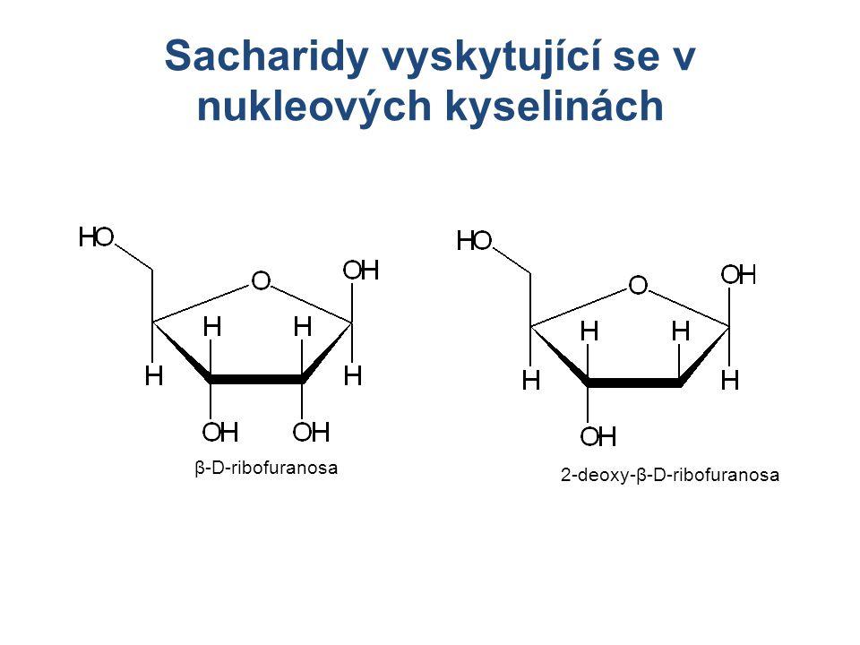 Sacharidy vyskytující se v nukleových kyselinách