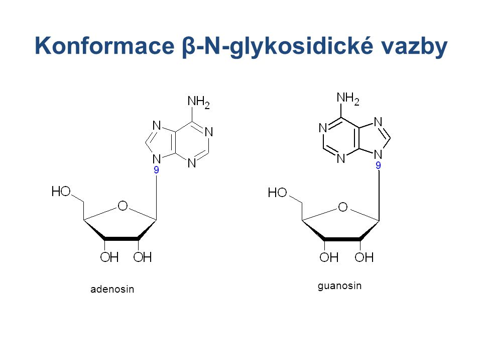 Konformace β-N-glykosidické vazby