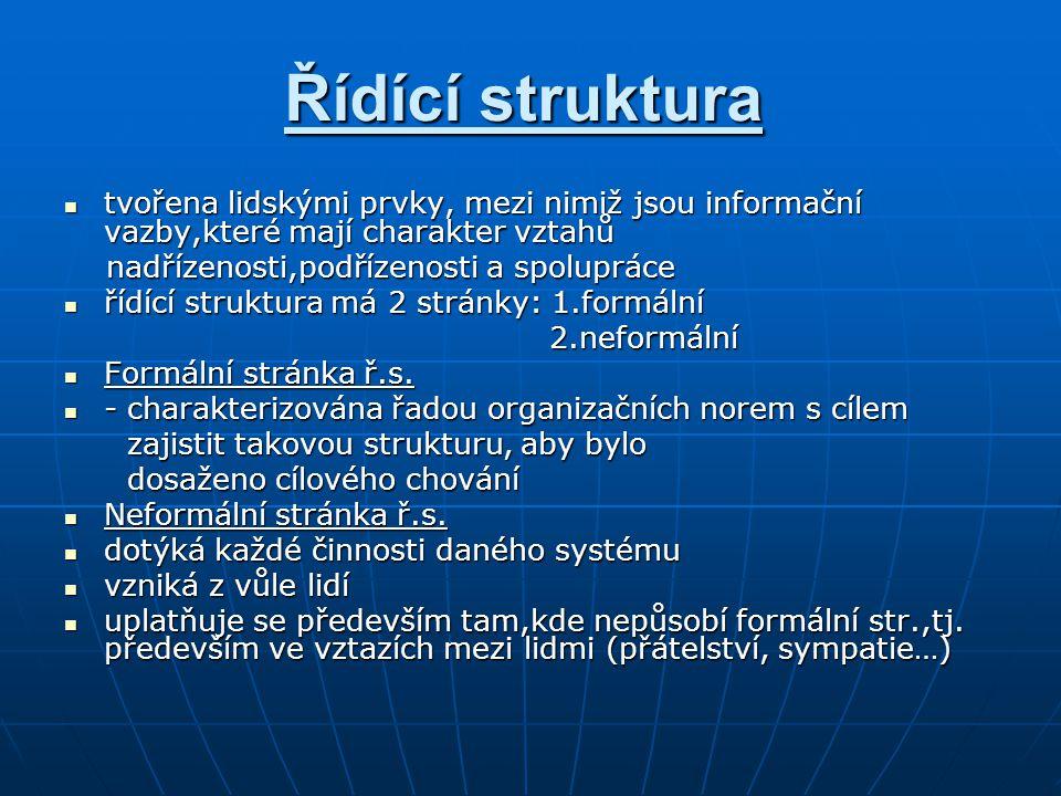 Řídící struktura tvořena lidskými prvky, mezi nimiž jsou informační vazby,které mají charakter vztahů.