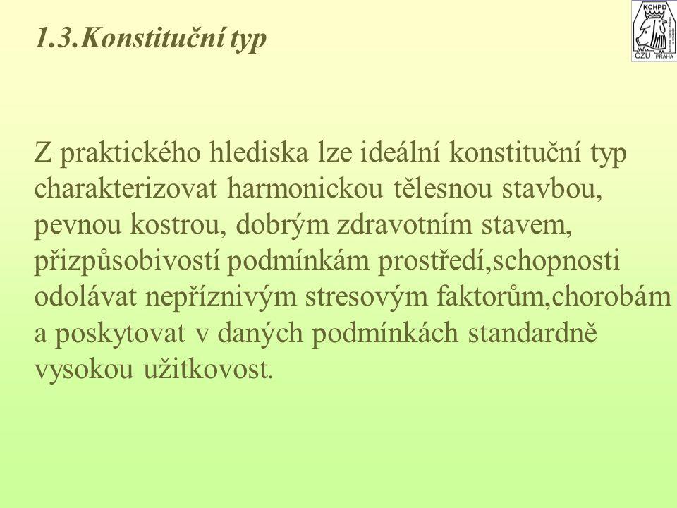 1.3.Konstituční typ Z praktického hlediska lze ideální konstituční typ. charakterizovat harmonickou tělesnou stavbou,