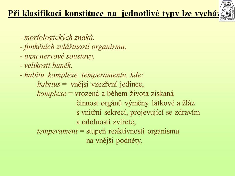 Při klasifikaci konstituce na jednotlivé typy lze vycházet z: