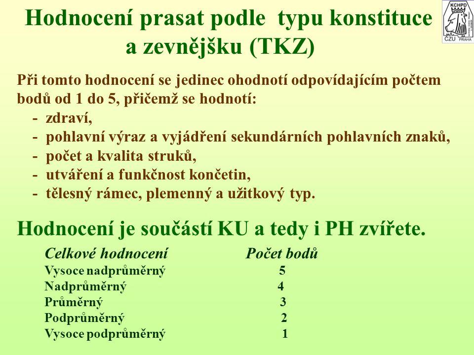 Hodnocení prasat podle typu konstituce a zevnějšku (TKZ)
