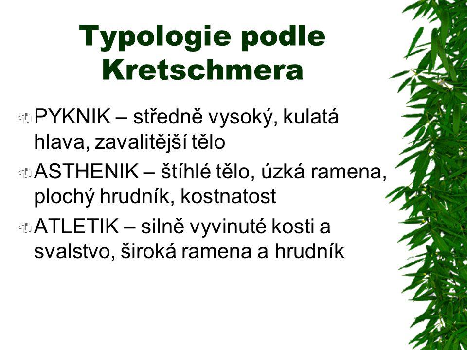 Typologie podle Kretschmera