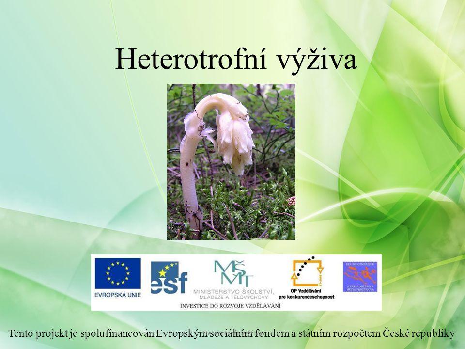 Heterotrofní výživa Tento projekt je spolufinancován Evropským sociálním fondem a státním rozpočtem České republiky.