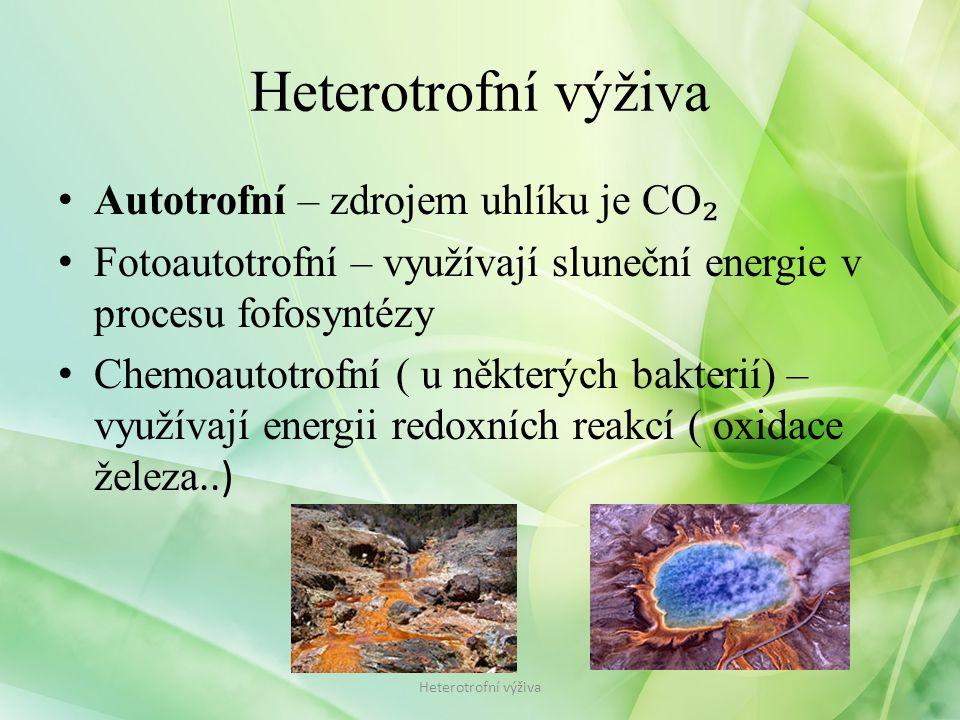 Heterotrofní výživa Autotrofní – zdrojem uhlíku je CO₂
