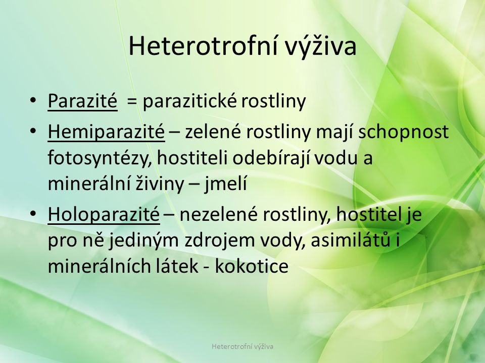 Heterotrofní výživa Parazité = parazitické rostliny