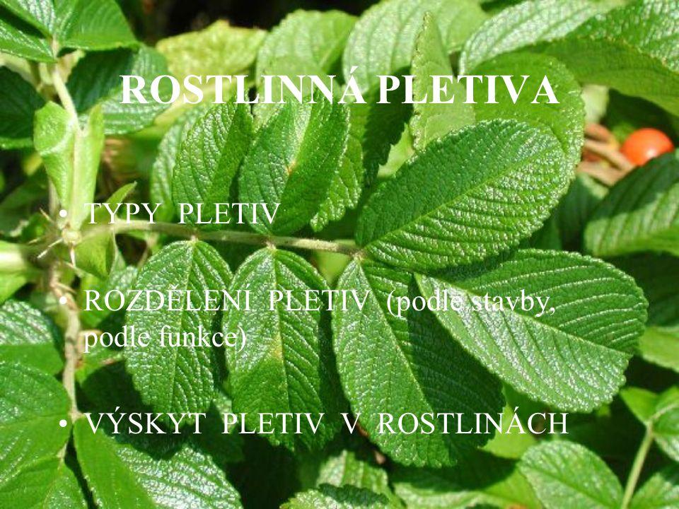 ROSTLINNÁ PLETIVA TYPY PLETIV