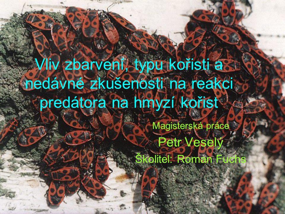 Magisterská práce Petr Veselý Školitel: Roman Fuchs