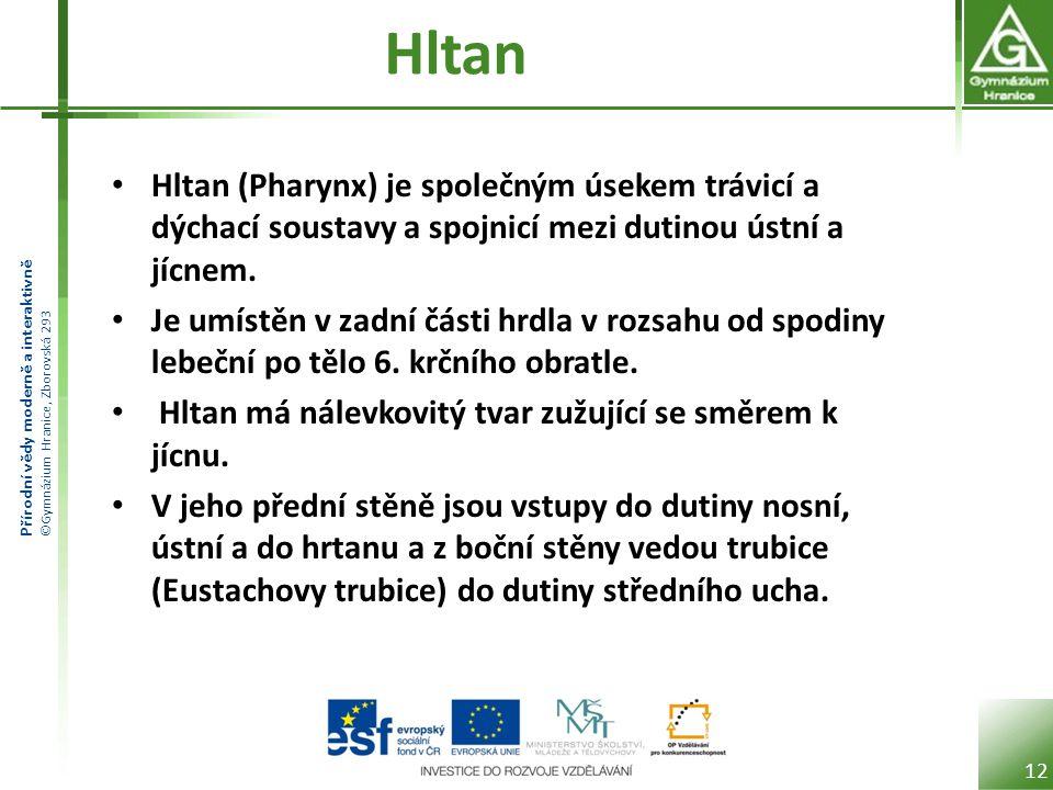 Hltan Hltan (Pharynx) je společným úsekem trávicí a dýchací soustavy a spojnicí mezi dutinou ústní a jícnem.