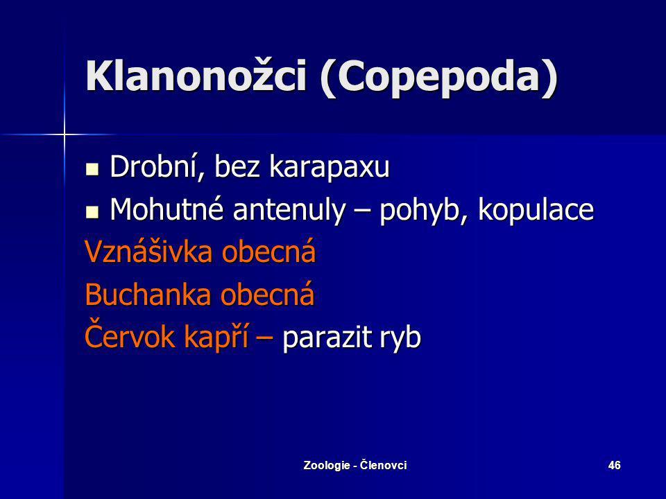 Klanonožci (Copepoda)