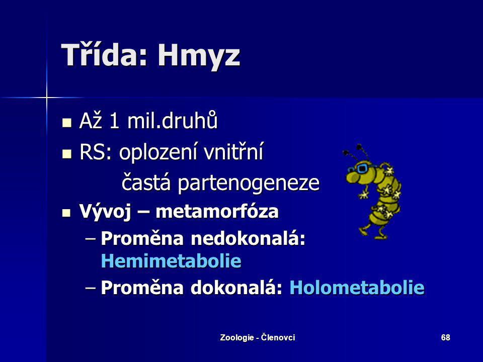 Třída: Hmyz Až 1 mil.druhů RS: oplození vnitřní častá partenogeneze
