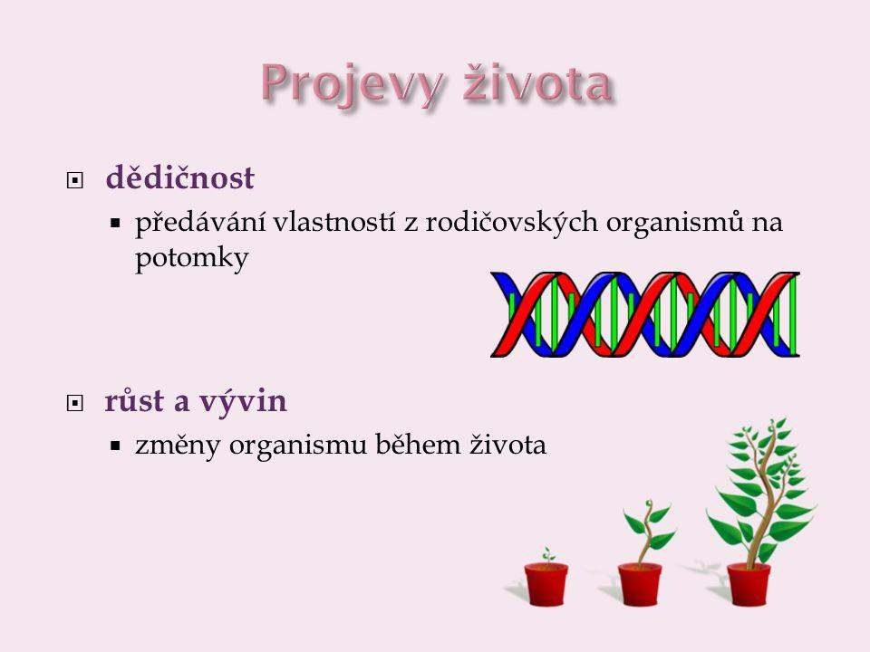 Projevy života dědičnost růst a vývin