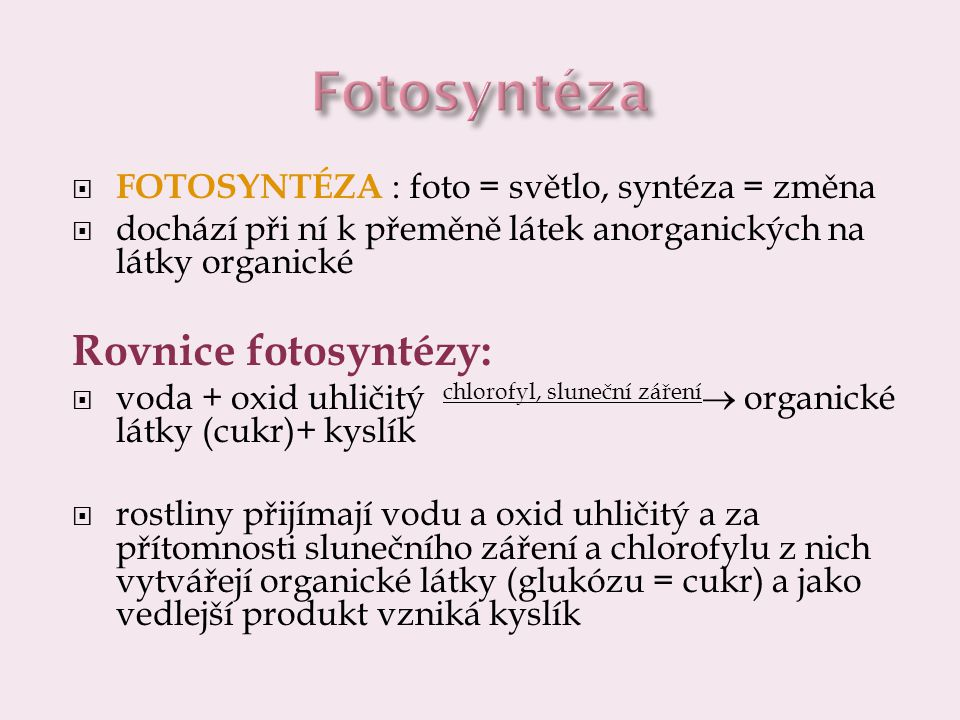 Fotosyntéza Rovnice fotosyntézy: