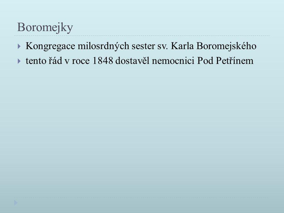 Boromejky Kongregace milosrdných sester sv. Karla Boromejského