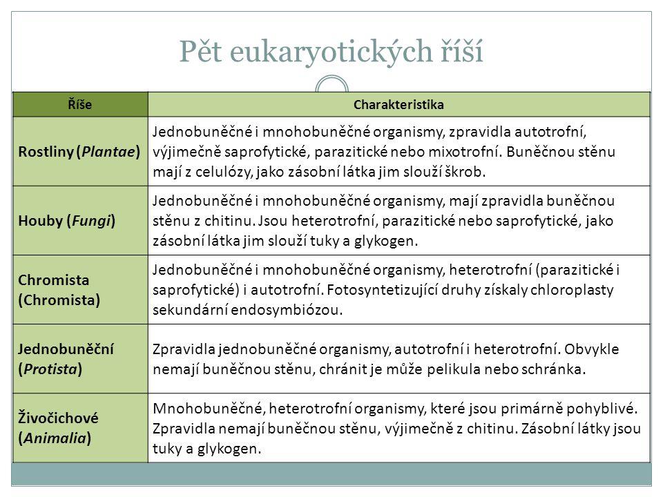 Pět eukaryotických říší